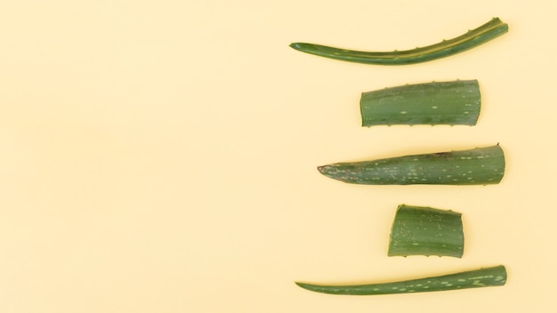 Slices of aloe vera on beige background