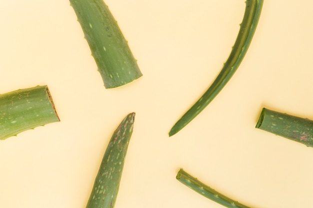 Slices of aloe vera leaves on beige background