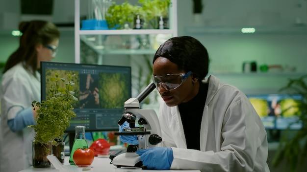 Gmo 녹색 잎을 분석하는 생물학 연구원의 슬라이드 보기