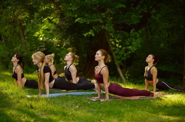 Стройные женщины делают упражнения на растяжку, групповые занятия йогой на траве в парке