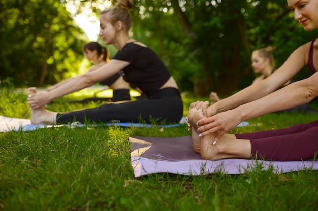 Стройные женщины делают упражнения на растяжку на ковриках, групповые занятия йогой на траве в парке