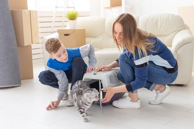 날씬한 젊은 어머니와 어린 아들이 아름다운 회색 스코틀랜드 폴드 고양이를 새 제품으로 출시