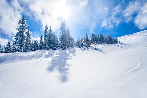 カルパティア山脈のスキーリゾートの斜面。ウクライナ