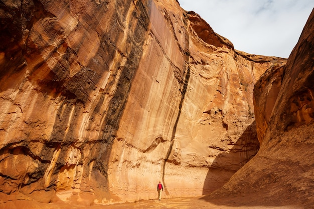Slot canyon in grand staircase escalante national park, utah, usa.