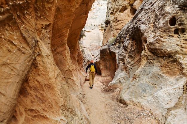 그랜드 계단 escalante 국립 공원, 유타, 미국에서 슬롯 캐년. 유타 사막에서 특이한 다채로운 사암 구조물.