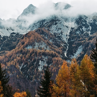 Slovenian alps in autumn season with colorful trees