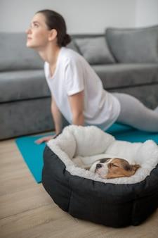 Замедление. молодая женщина, тренирующаяся со своим щенком