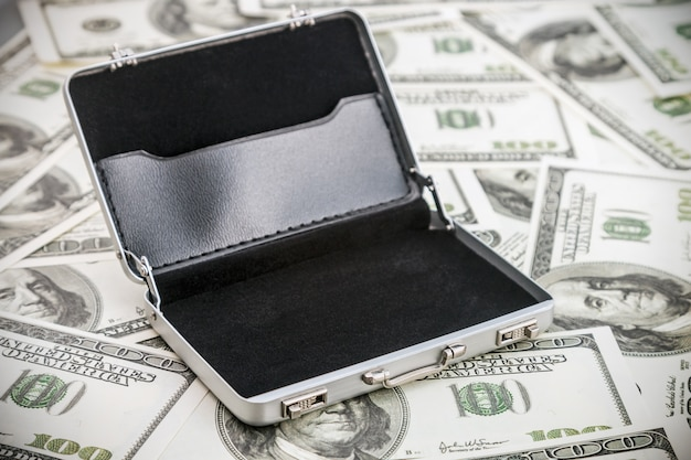 Small aluminum case for the dollar