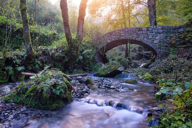 가을 숲 속 개울에 있는 작은 고대 바위 다리