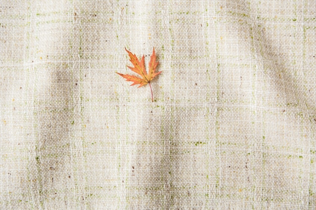 Small autumn leaf. flat lay. tablecloth background. minimalist style.