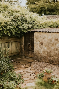 여름에 작은 뒤뜰 집 정원