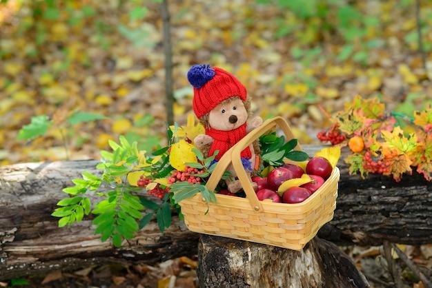 Корзинка с игрушкой ёжик и яблоками