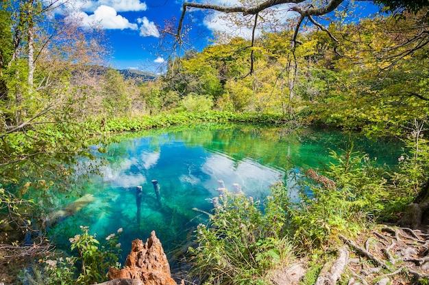 Маленькое красивое лазурное озеро в национальном парке плитвицкие озера, хорватия