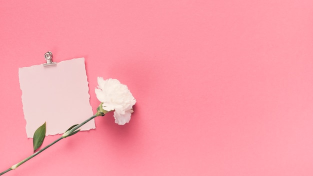 Small blank paper with flower on table