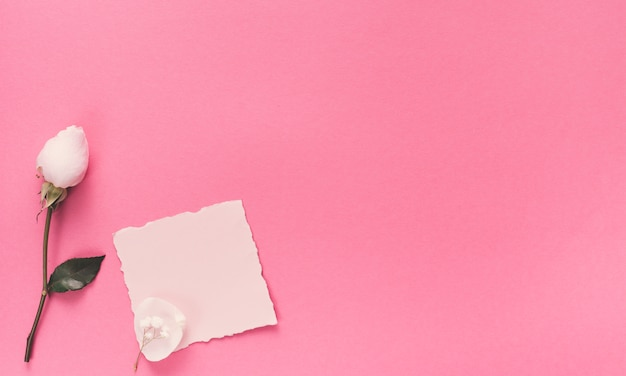 Small blank paper with white flower on pink table