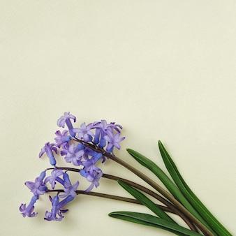 노란색 배경 및 복사 공간에 파란 꽃의 작은 꽃다발