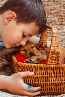 The small boy embarcing a basket with dog