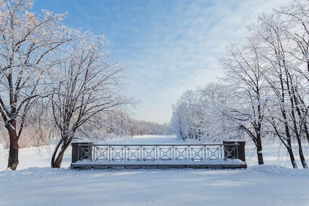 맑은 겨울 날에 공원에서 얼어 붙은 강 위에 작은 다리.