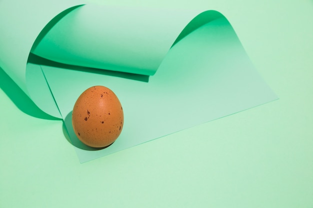 Small brown chicken egg with rolled paper