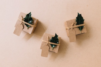 Small brown gift boxes with green leaflets