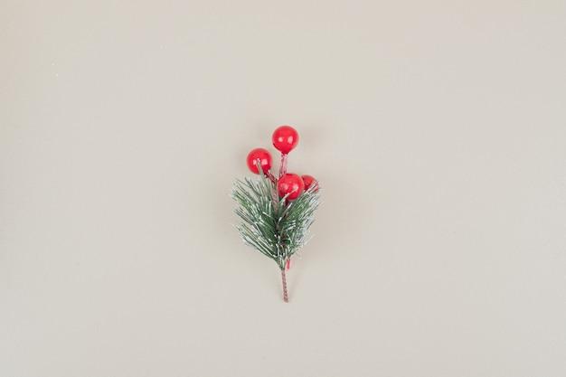白い表面にクリスマスツリーの小さなブランチ