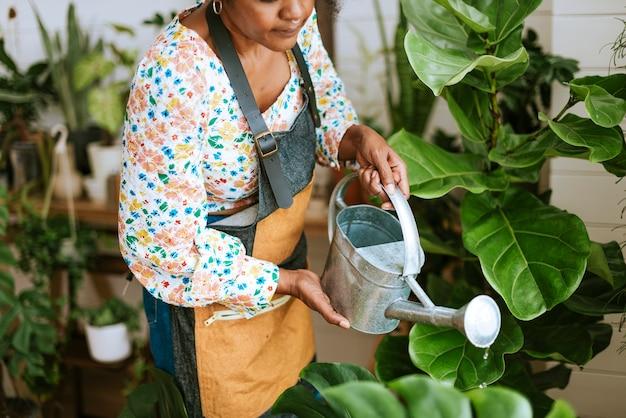 中小企業の労働者が植物に水をまく