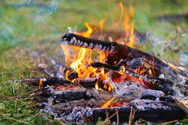 Small campfire closeup.