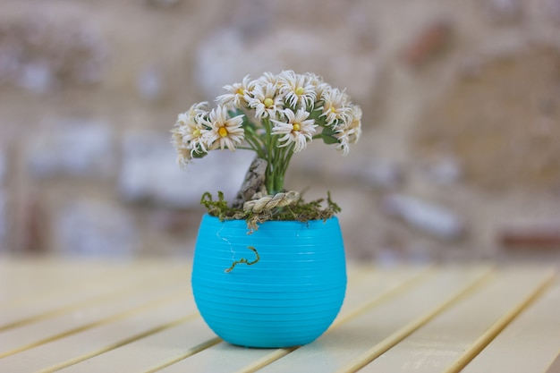 Small chamomile flowers in blue pot on the wooden table