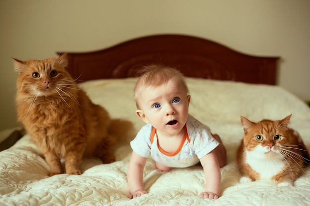 The small child and cats lie on the bed