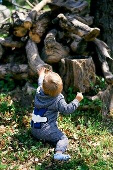 작은 아이가 잔디밭에 앉아 쓰러진 그루터기 다시보기에 도달
