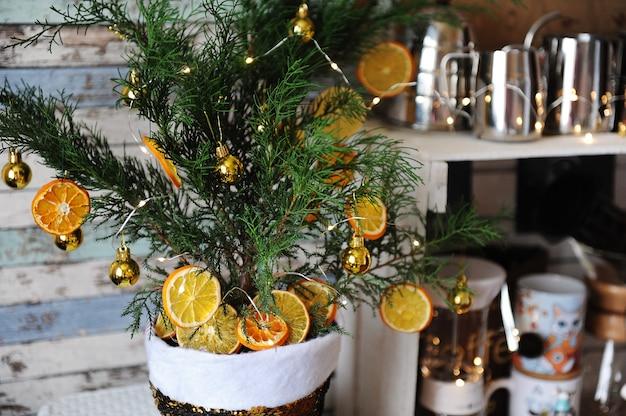 Малый можжевельник елки в горшке. украшен крошечными золотыми шариками, сушеными обезвоженными кусочками цитрусовых и легкой гирляндой.