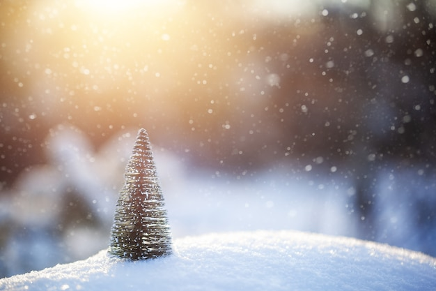 雪の上の小さなクリスマスツリー