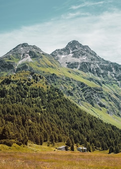 小さな国はスイスアルプスの山々に岩と森を収容しています