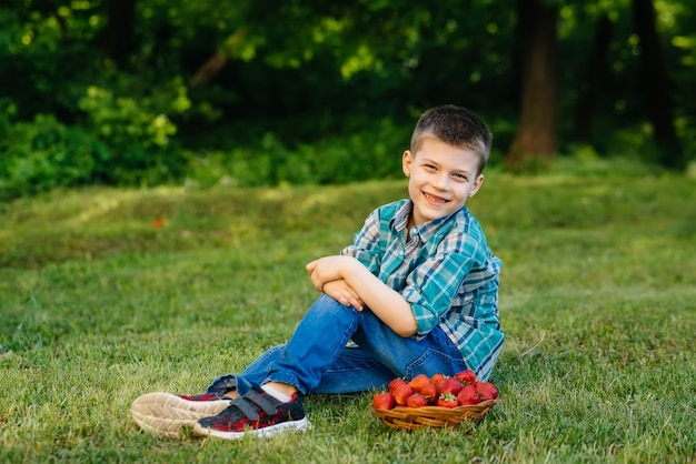 A small cute boy is sitting with a large box of ripe and delicious strawberries