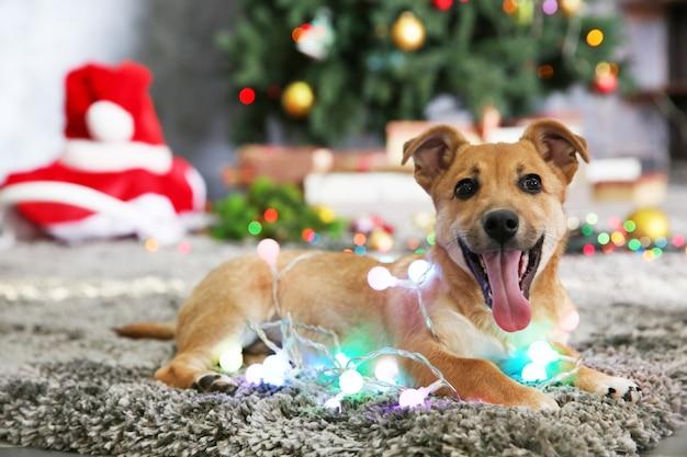 Маленькая милая забавная собака с гирляндой на рождественской поверхности