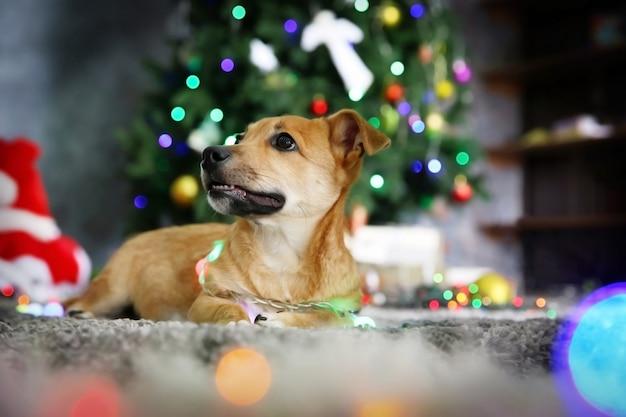 Маленькая милая забавная собачка с гирляндой на рождественской поверхности