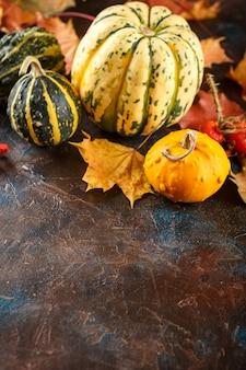 茶色の小さな装飾的なカボチャと秋のカエデの葉