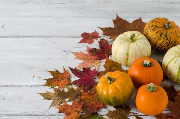 オレンジ、白、緑の異なる色の小さな装飾的なカボチャは、木製の背景に横たわっています