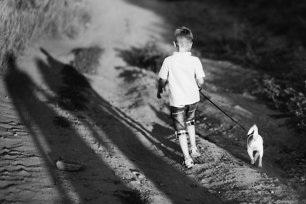 A small dog of the jack russell terrier breed on a walk with its owners