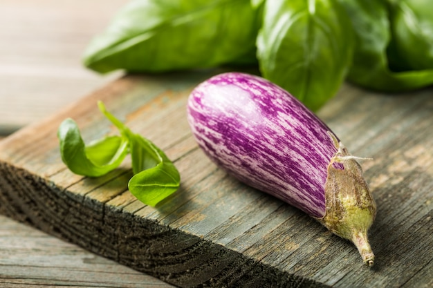 Small eggplant or aubergine