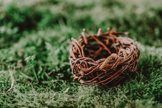 Small empty nest on green moss