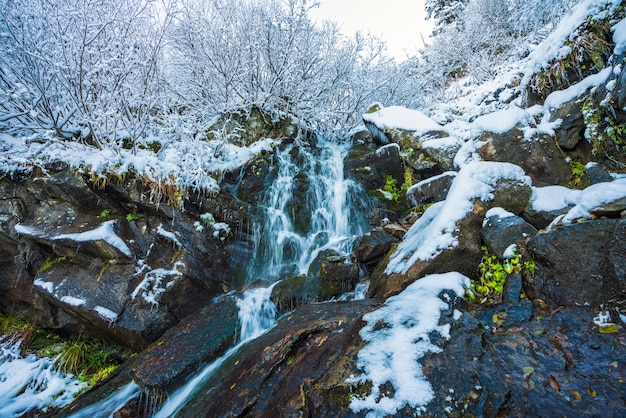Small fast stream among small wet stones and cold white snow in the picturesque carpathian mountains
