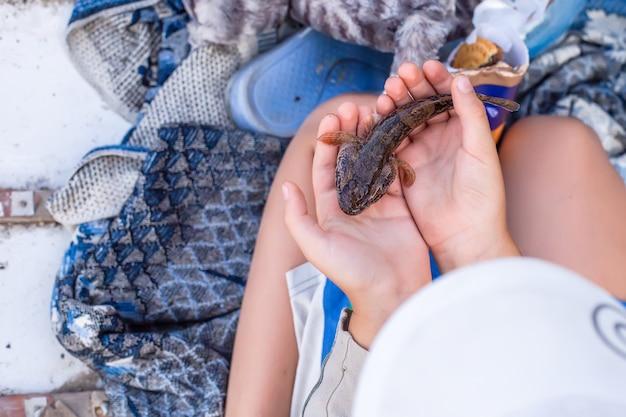 子供の手の中の小さな魚。子供と釣り。男の子の手のひらでキャッチ。