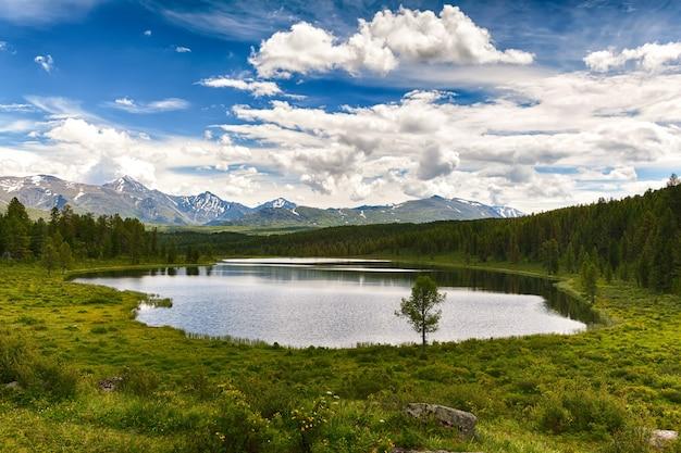 山の尾根の前にある小さな森の湖