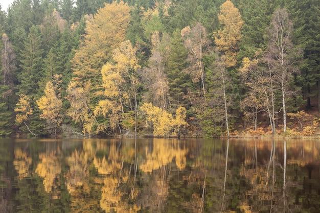 Soderasen 국립 공원에서 화창한 가을 아침에 작은 숲 호수