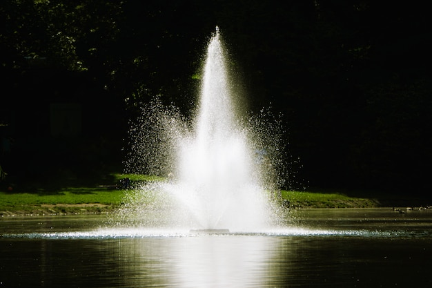 A small fountain in the lake.