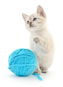 小さな面白い子猫と糸のクルー。白い背景で隔離