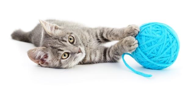 小さな面白い子猫と糸のクルー