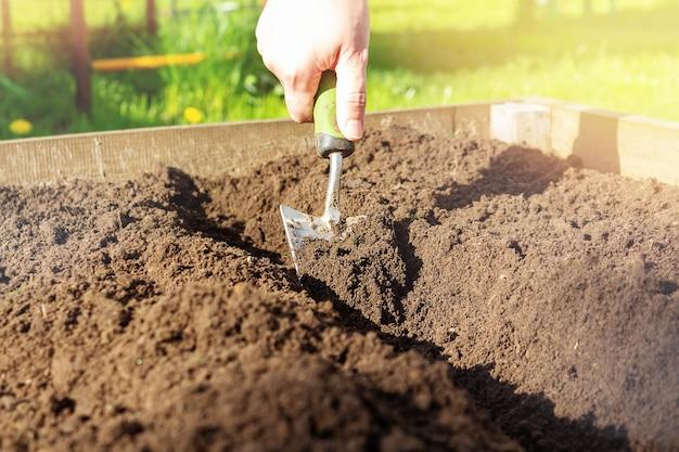 Маленькая садовая лопата в руке женщины крупным планом