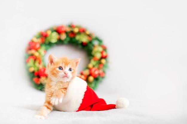 サンタの帽子をかぶった小さな生姜の子猫